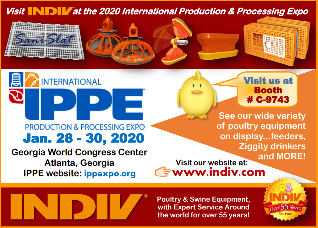 indiv-ippe-event