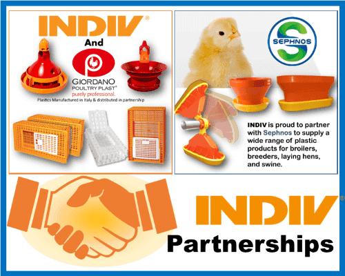 indiv-usa-partnerships